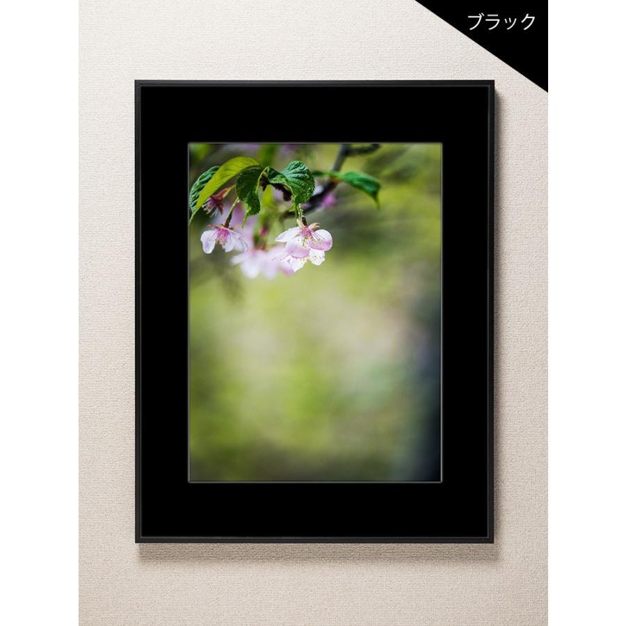 【片岡正一郎】オリジナルプリント「桜」No.2 A3額付き|exa-photo|03