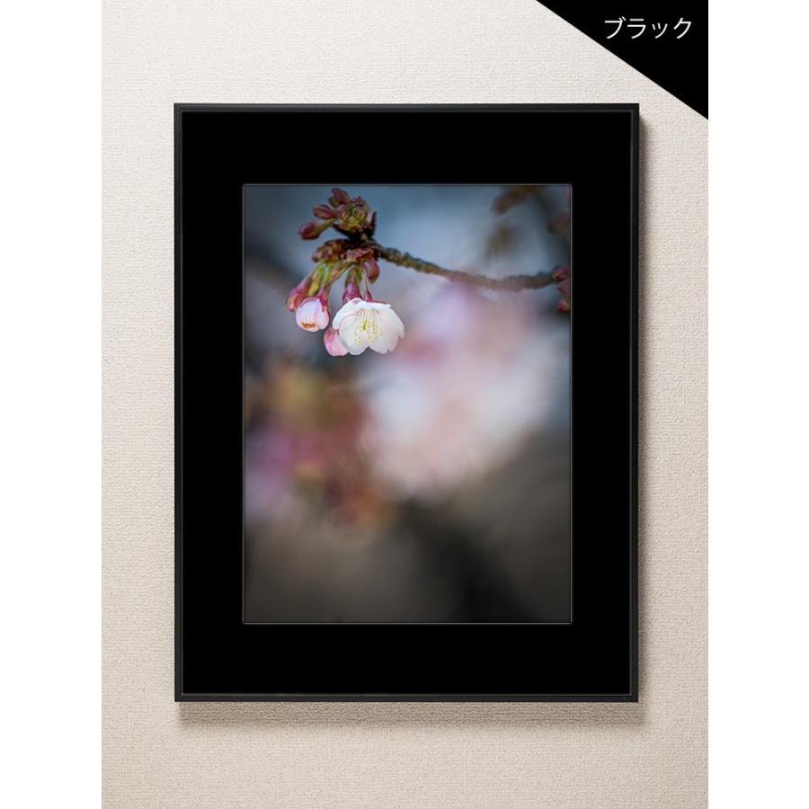 【片岡正一郎】オリジナルプリント「桜」No.5 A3額付き exa-photo 03