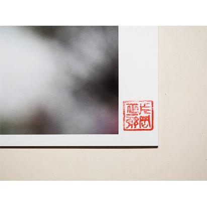 【片岡正一郎】オリジナルプリント「桜」No.5 A3額付き exa-photo 05