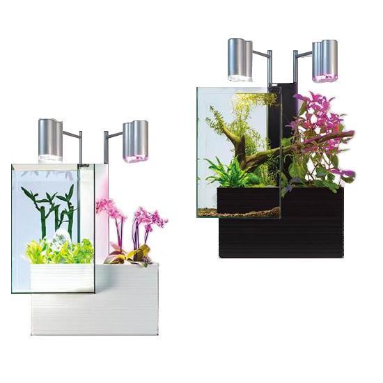 魚と植物がセットで楽しめる 家庭用アクアポニックス brio35(ブリオ) 60Hz地域用(西日本) キット 飼育 水槽 めだか 栽培 花 ハーブ 野菜 チューリップ ガーデ