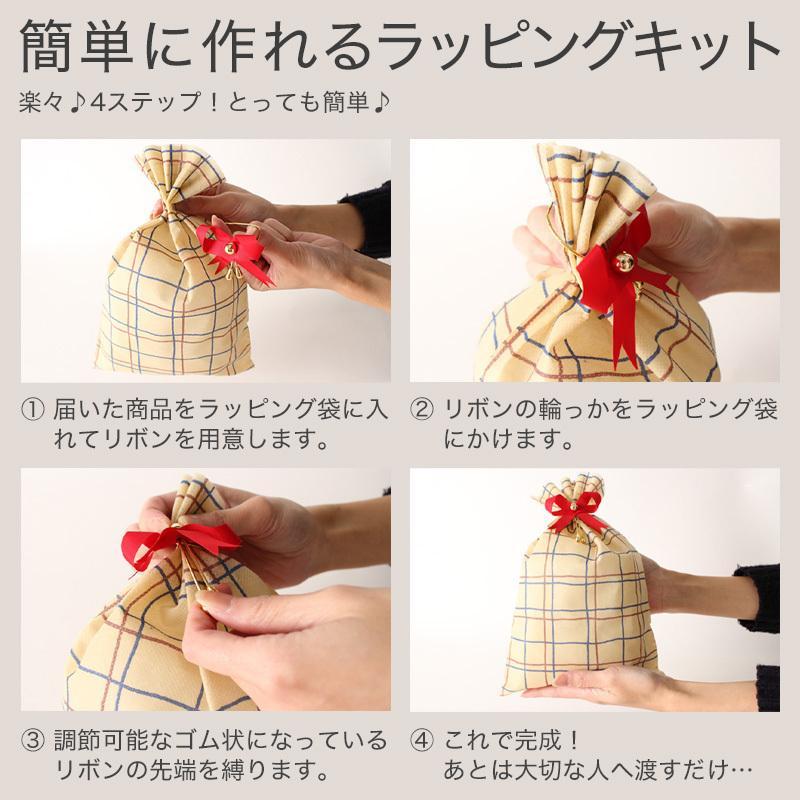 【レギュラーサイズ】 ラッピング プレゼント ギフト 簡単キット ※ラッピングキットのみの販売となります 【ラッピング単体でのご注文は不可】|f-box|06