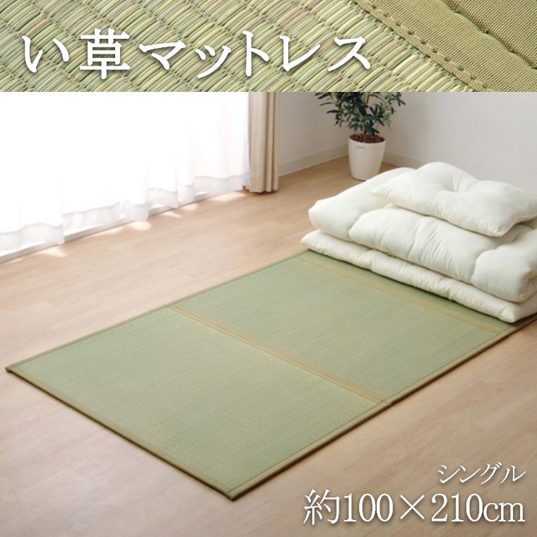 い草 マットレス 約100×210cm シングル 三つ折り 置き畳 日本製