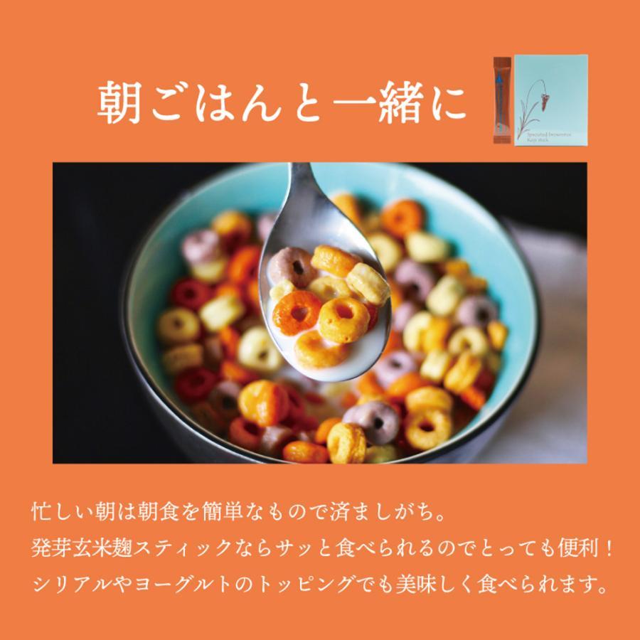発芽玄米麹スティック いつでもおいしくバランスチャージ fabala 03