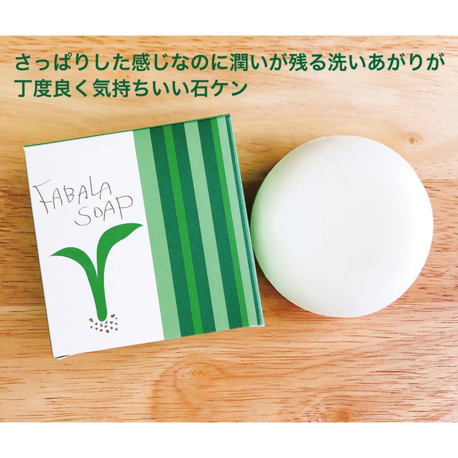 FABALA SOAP (ファバラ ソープ) 全身に使えるソープ fabala 02