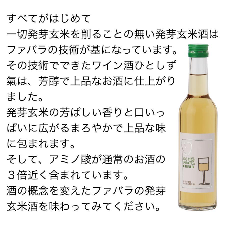 ワイン酒ひとしず氣 辛口の発芽玄米酒|fabala|02