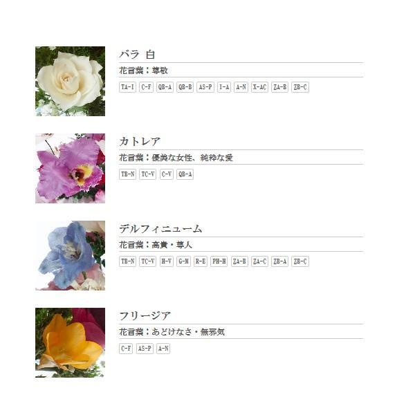 """Fairy//TB BL 3/""""H"""