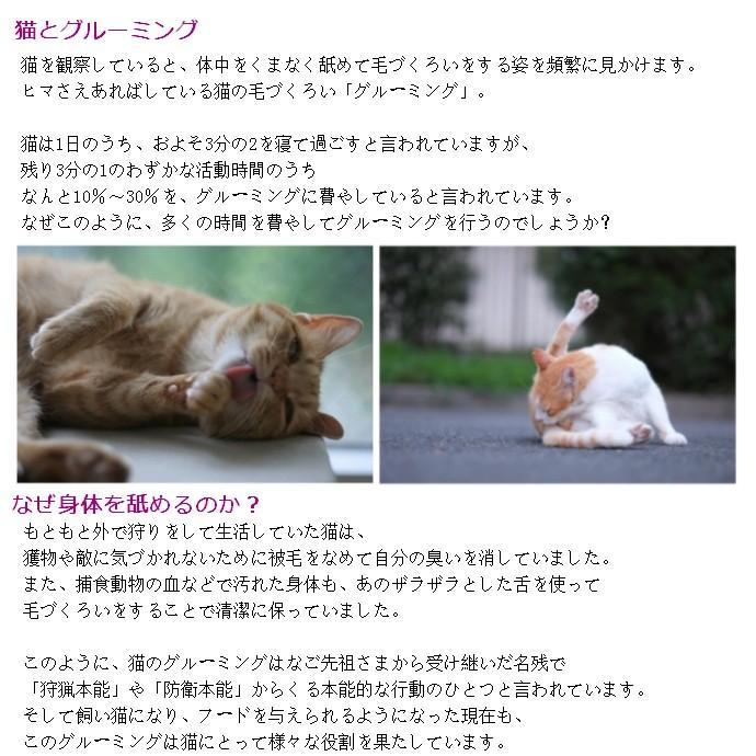 ワタオカ ねこじゃすり ピンク (99800011) familypet 09
