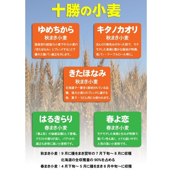 「LA LUNE(ラ・リュンヌ)Type55」北海道産フランスパン用小麦粉 25kg|farmtokachi|03
