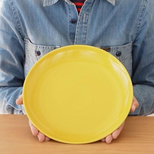 波佐見焼 Common コモン プレート 大皿 24cm 皿 食器 ワンプレート グッドデザイン賞 食洗機可 電子レンジ可 日本製|favoritestyle|05