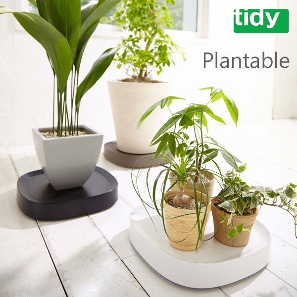 tidy Plantable プランタブル(水受け キャスター移動 鉢皿 鉢置台)|fci