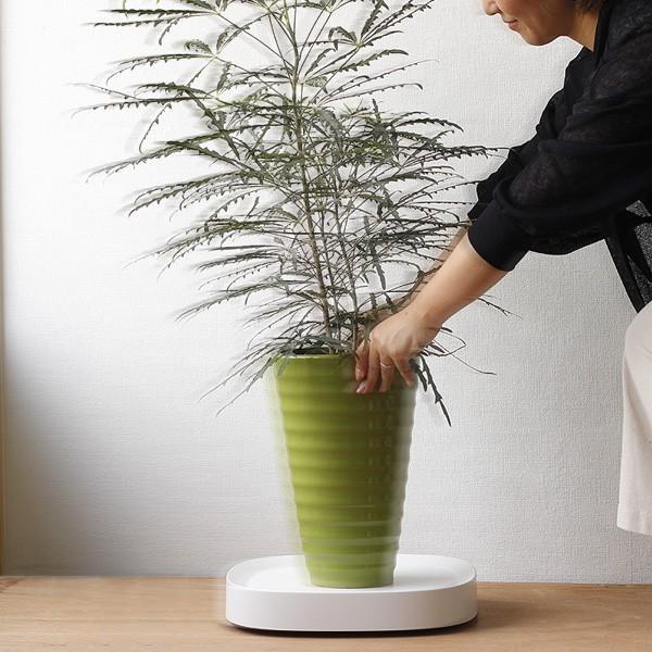 tidy Plantable プランタブル(水受け キャスター移動 鉢皿 鉢置台)|fci|04