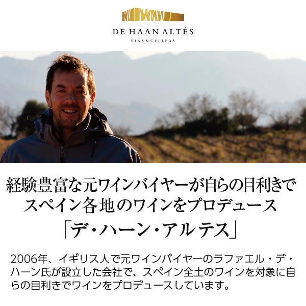 白ワイン スペイン デ ハーン アルテス エル コンベルティード ベルデホ オーガニックワイン 2019 750ml wine felicity-y 02