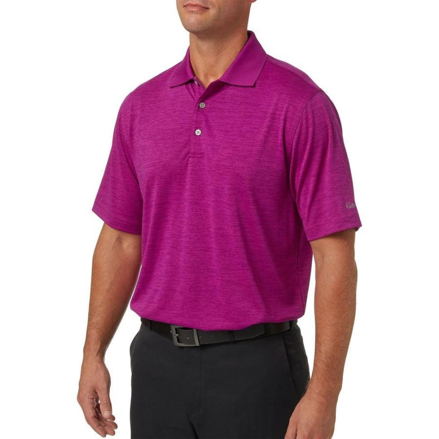ウォルターヘーゲン Walter Hagen メンズ ゴルフ ポロシャツ トップス core space dye golf polo Berry 紫の