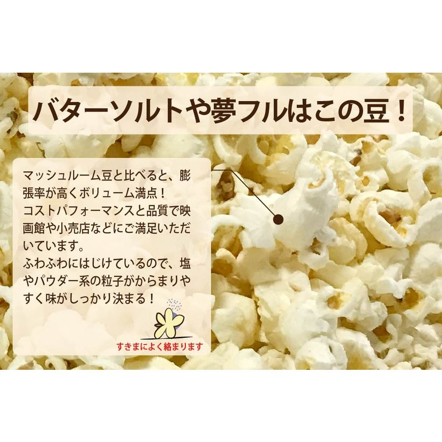 ネコポス ポップコーン豆500g バタフライorマッシュルーム |fescogroup|04