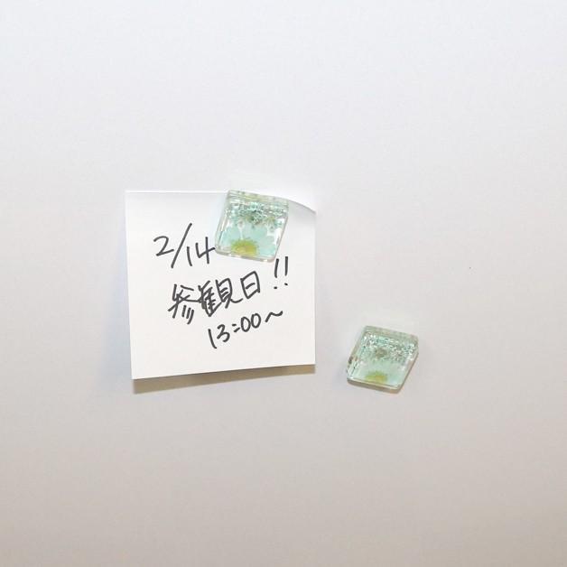 押し花マグネット/ガラスマグネット/花/フラワー/テーブルウェア/キッチン用品/冷蔵庫マグネット 紙留め 磁石 綺麗 華やか 贈り物 ギフト 母の日|ffactory-ff|12