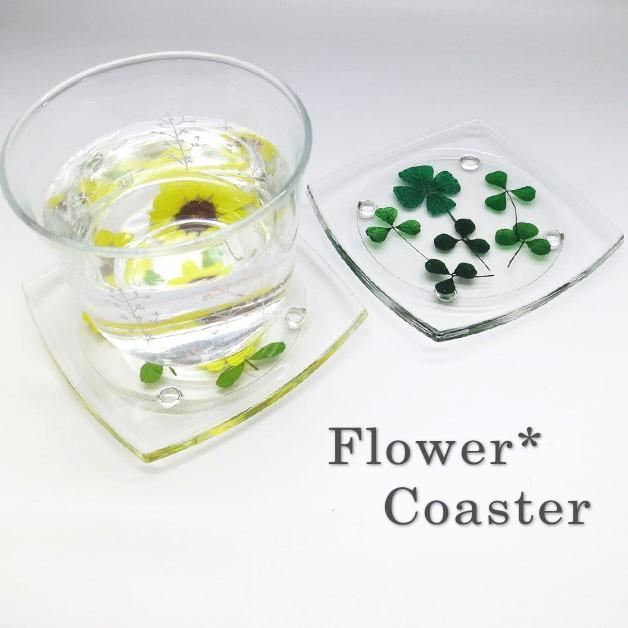 押し花コースター/アクリルコースター/花/テーブルウェア/フラワー/デルフィニウム クローバー バーベナ ヒマワリ コスモス ノースポール 赤バラ|ffactory-ff