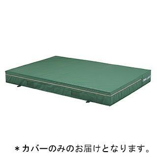 トーエイライト エバーマット (カバーのみ)屋内外兼用エバーマット(防水エステル帆布) 200×300×50cm G-1543A 特殊送料(ランク:39) (TOL) (QCB02)