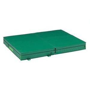 マット 体操マット DANNO(淡野)走り高跳び 屋外 マットランディングマット 屋外用(一枚式) 200×300×30cmD-3943 特殊送料:ランク(別途)(DAN)(QBJ37)