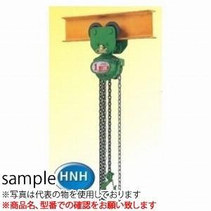 二葉製作所 手動式チェーンブロック HNH型 HNH2T 3M