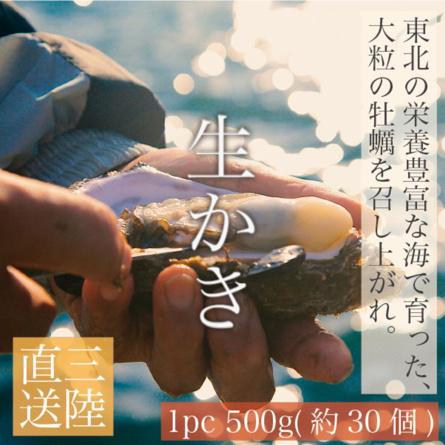 【産地の旬を堪能】東北・三陸産『生かき』/ 1pc 500g(約30粒) / お家で魚介を楽しもう