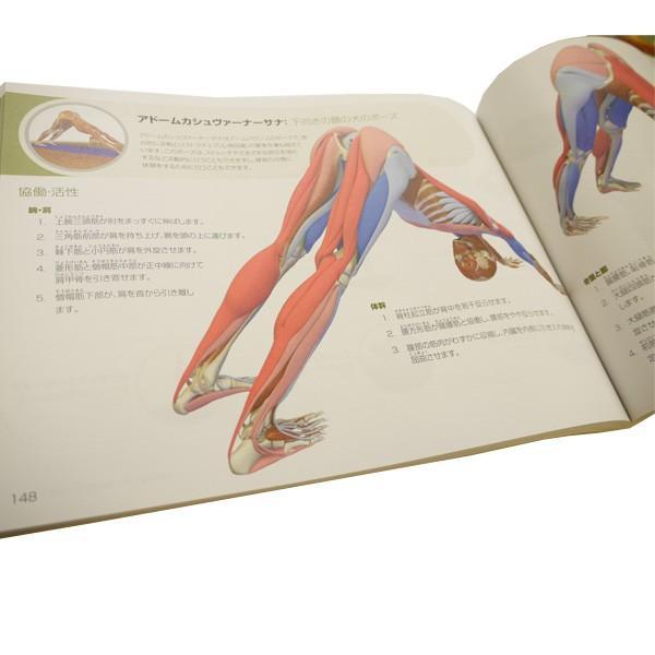図解YOGAアナトミー アーサナ編 UTL アンダーザライトヨガの教科書|fitnessclub-y|02