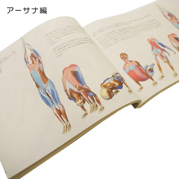 図解YOGAアナトミー アーサナ編 UTL アンダーザライトヨガの教科書|fitnessclub-y|03