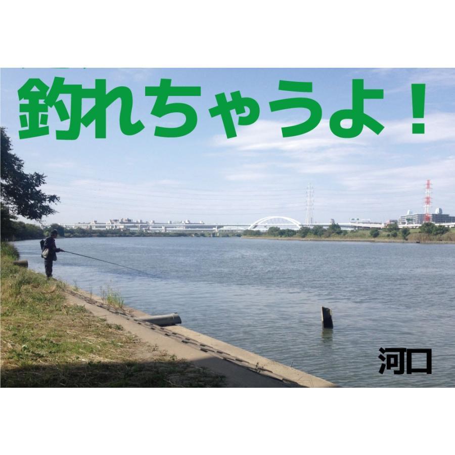 ルアーもついたフルセット!チャレンジシーバスセット/シーバス/ルアー/釣り/FIVESTAR/ファイブスター|fivestarfishing|03