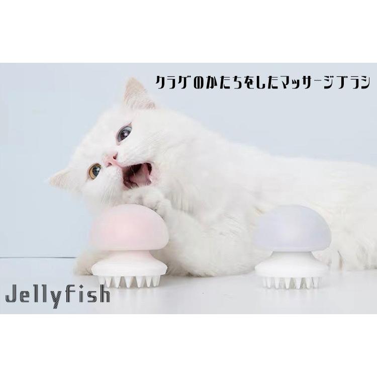 ネコ ゼリー フィッシュ