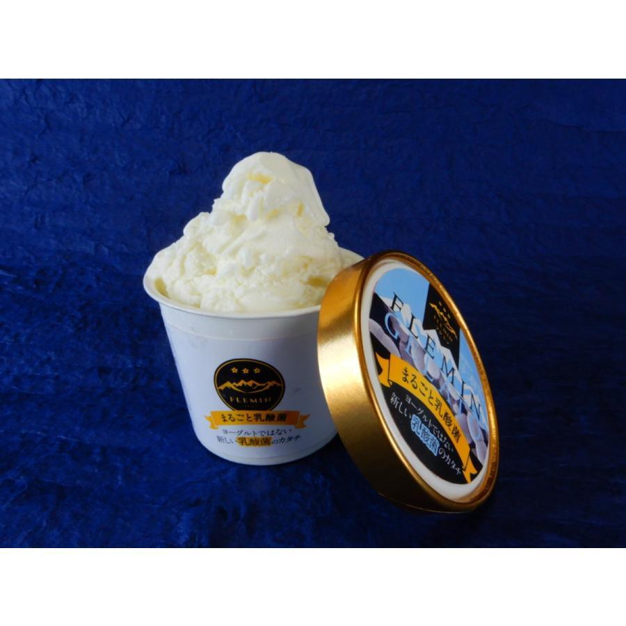 生きた乳酸菌ジェラート/魚沼のアイスクリーム/フレミン|子供用にも安心(卵不使用/卵アレルギー対応) 110ml×12個入 |flemin-spg|02