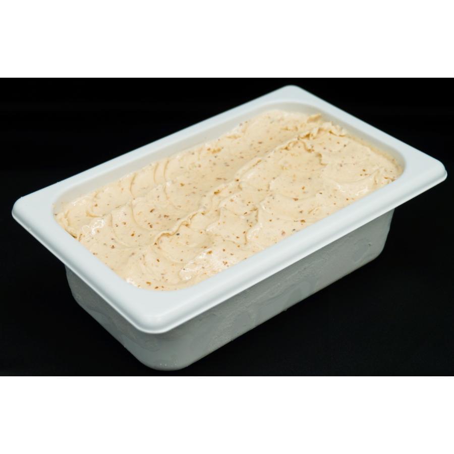 フレミン/新潟県 魚沼乳の美味しいジェラート/アイスクリーム 「マイスターラムレーズン」業務用アイスタッパー 1.8L flemin-spg
