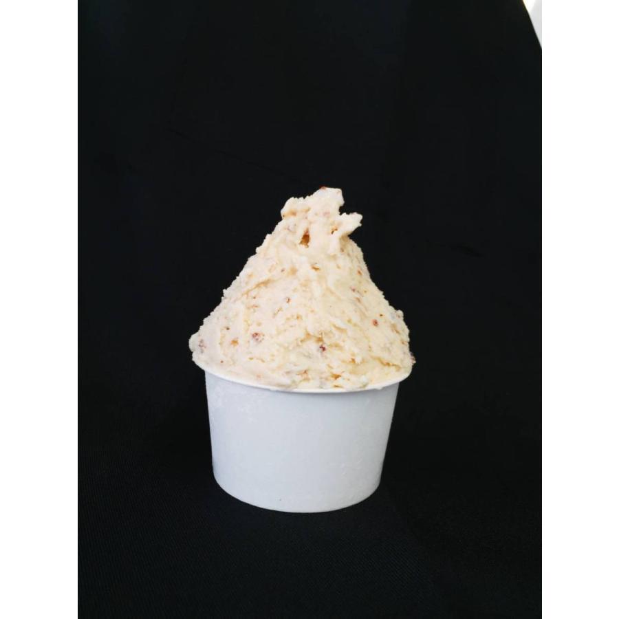 フレミン/新潟県 魚沼乳の美味しいジェラート/アイスクリーム 「マイスターラムレーズン」業務用アイスタッパー 1.8L flemin-spg 02