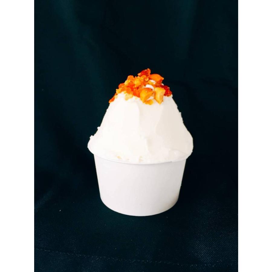フレミン|新潟県 魚沼の美味しいジェラート/アイスクリーム 「プラリネミルク」 業務用アイスタッパー 1.8L|flemin-spg|02