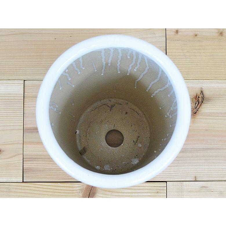 円柱形陶器鉢M ホワイト 7号サイズ flower-c 02