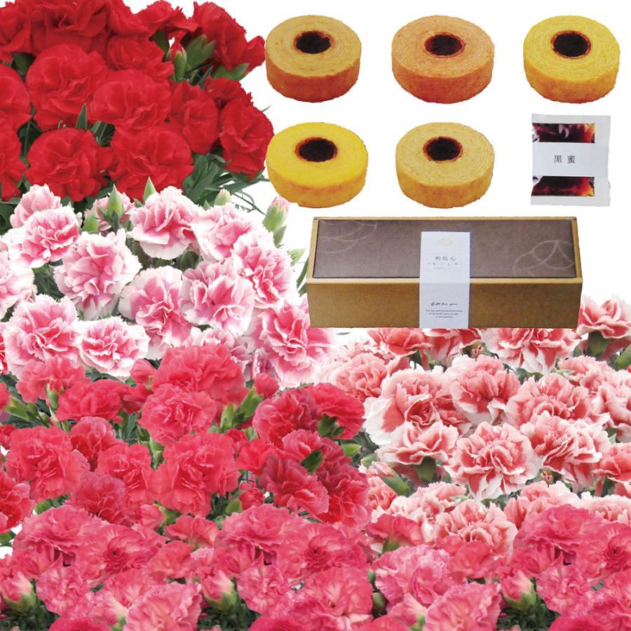 母の日 カーネーション 母の日 プレゼント 花 ギフト 母の日 スイーツ 60代 母の日 70代 母の日 プレゼント カーネーション 5号鉢と5種類の和風バームクーヘン|flower