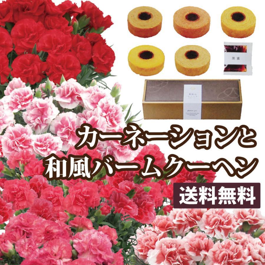 母の日 カーネーション 母の日 プレゼント 花 ギフト 母の日 スイーツ 60代 母の日 70代 母の日 プレゼント カーネーション 5号鉢と5種類の和風バームクーヘン|flower|02