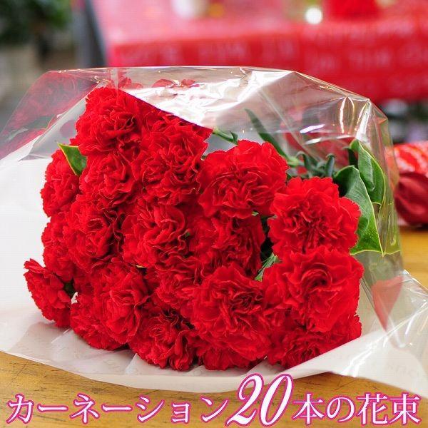 カーネーション20本花束