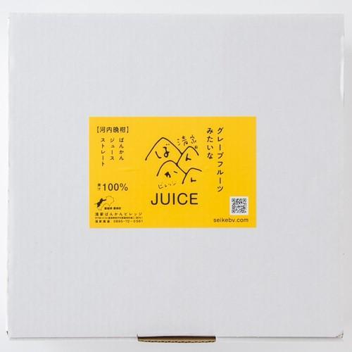 清家ばんかんビレッジ 河内晩柑ジュース   0033 : 柑橘ジュース・愛媛県産 fmarushe535 02