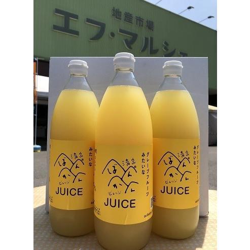 清家ばんかんビレッジ 河内晩柑ジュース   0033 : 柑橘ジュース・愛媛県産 fmarushe535 03