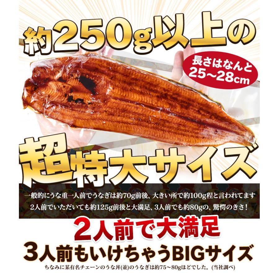 父の日 遅れてごめんね プレゼント 国産うなぎ 蒲焼き 約250g 生ズワイ蟹ポーション 500g 海鮮セット 2021年 ギフト 食べ物|foods-line|05