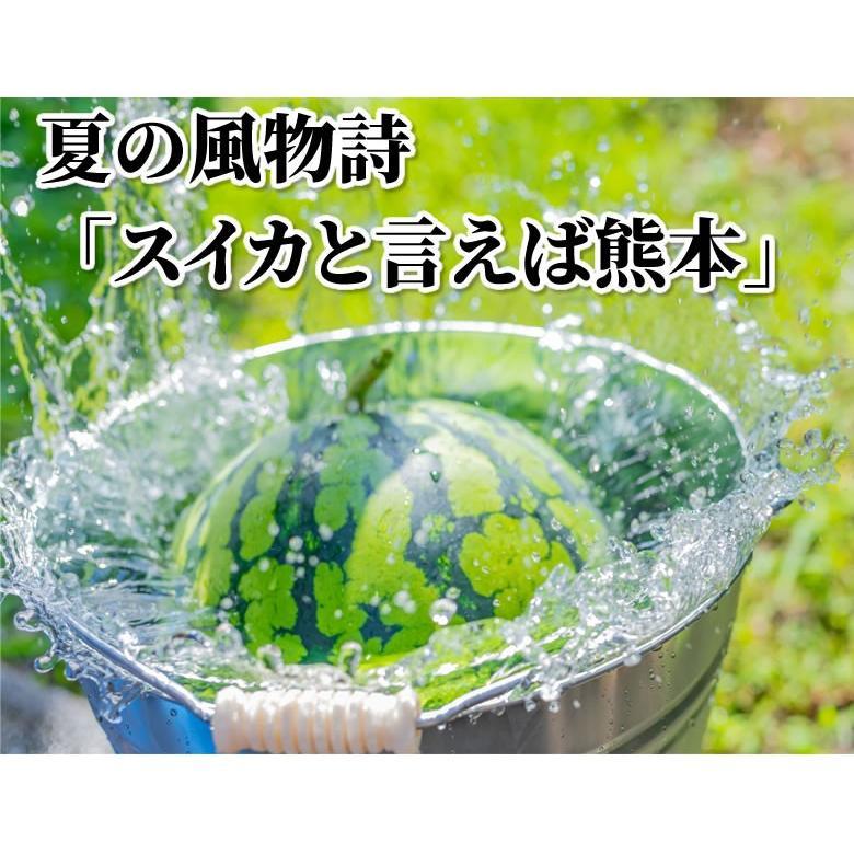 スイカ すいか 送料無料 熊本すいか 秀品 1玉 約3.5kg〜5kg お取り寄せ 熊本県産 西瓜 お取り寄せ フルーツ|foodys|03