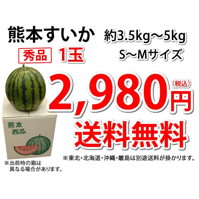 スイカ すいか 送料無料 熊本すいか 秀品 1玉 約3.5kg〜5kg お取り寄せ 熊本県産 西瓜 お取り寄せ フルーツ|foodys|04