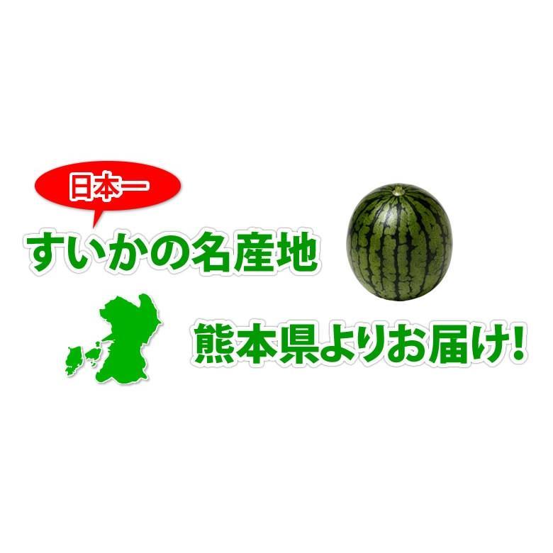 スイカ すいか 送料無料 熊本すいか 秀品 1玉 約3.5kg〜5kg お取り寄せ 熊本県産 西瓜 お取り寄せ フルーツ|foodys|05