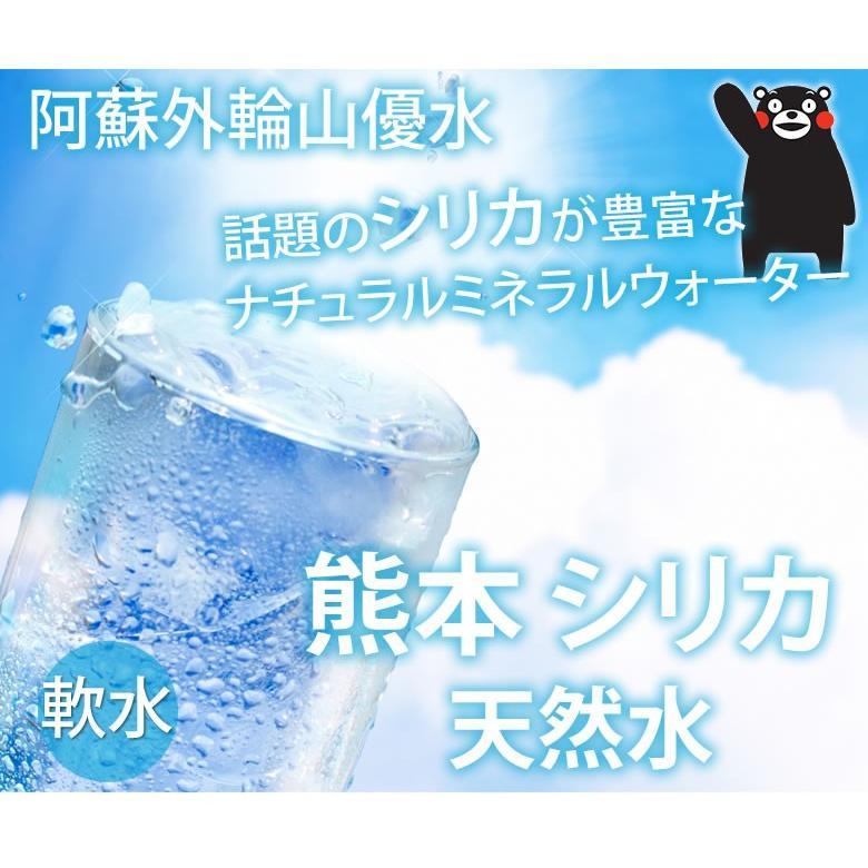 シリカ水 2L×10本 20L ミネラルウォーター 送料無料 くまもん 阿蘇外輪山天然優水 熊本シリカ天然水 シリカ 水 2リットル 美容 健康|foodys|02