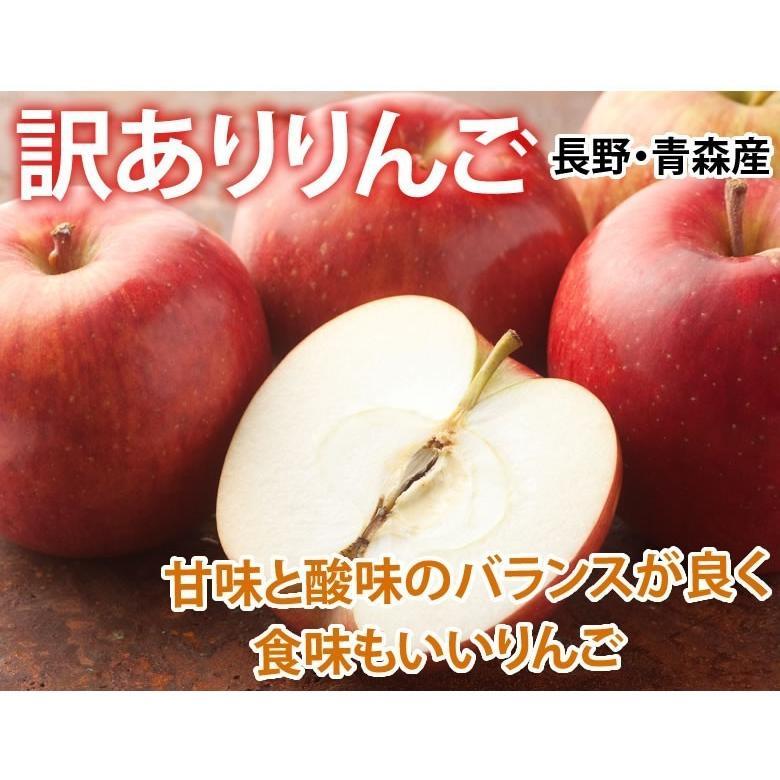 りんご 訳あり リンゴ 送料無料 約1.5kg 長野・青森県産 2セットで1セットおまけ お取り寄せ サンふじ つがる ジョナゴールド ふじ 林檎|foodys|02