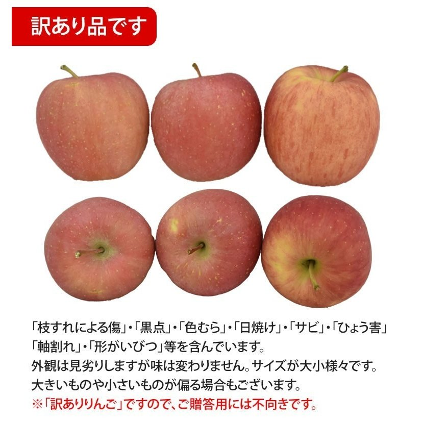 りんご 訳あり リンゴ 送料無料 約1.5kg 長野・青森県産 2セットで1セットおまけ お取り寄せ サンふじ つがる ジョナゴールド ふじ 林檎|foodys|05