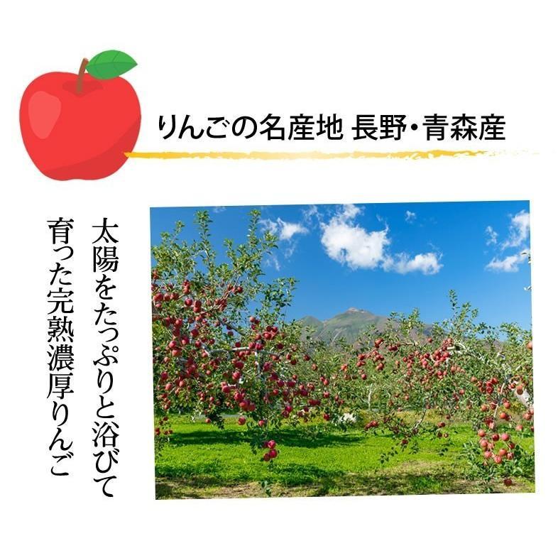 りんご 訳あり リンゴ 送料無料 約1.5kg 長野・青森県産 2セットで1セットおまけ お取り寄せ サンふじ つがる ジョナゴールド ふじ 林檎|foodys|06