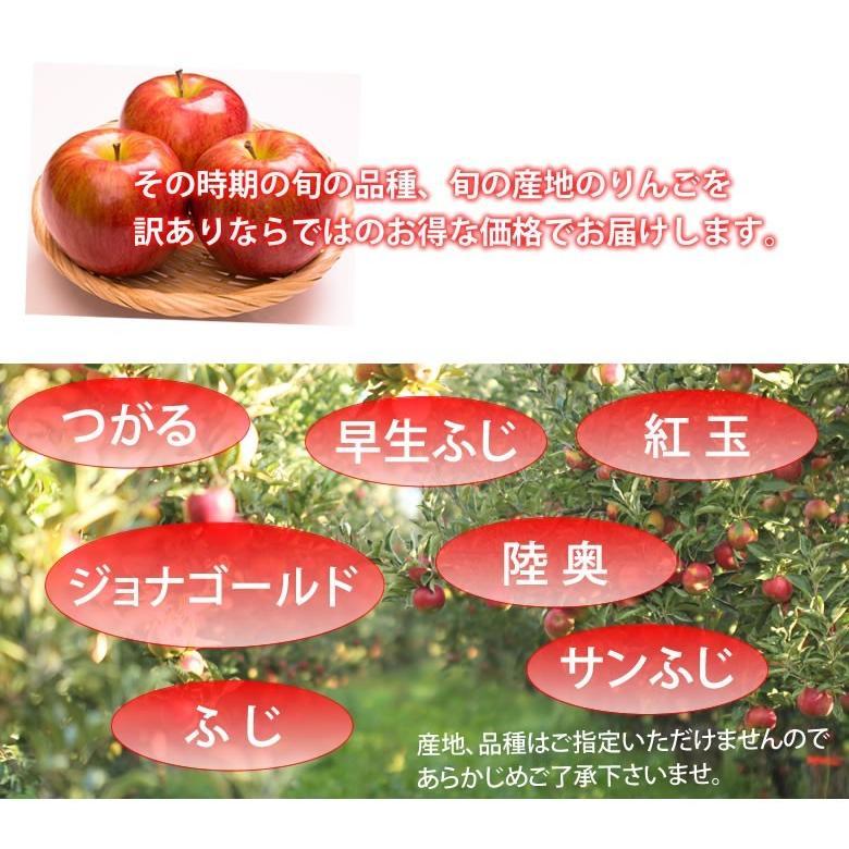 りんご 訳あり リンゴ 送料無料 約1.5kg 長野・青森県産 2セットで1セットおまけ お取り寄せ サンふじ つがる ジョナゴールド ふじ 林檎|foodys|07