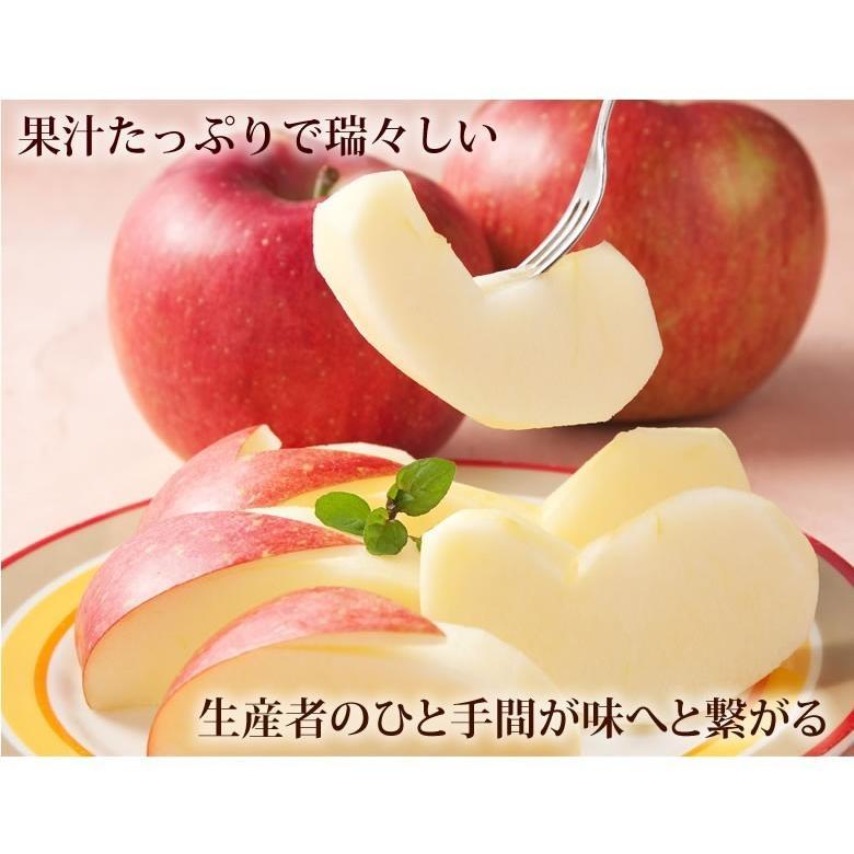 りんご 訳あり リンゴ 送料無料 約1.5kg 長野・青森県産 2セットで1セットおまけ お取り寄せ サンふじ つがる ジョナゴールド ふじ 林檎|foodys|08