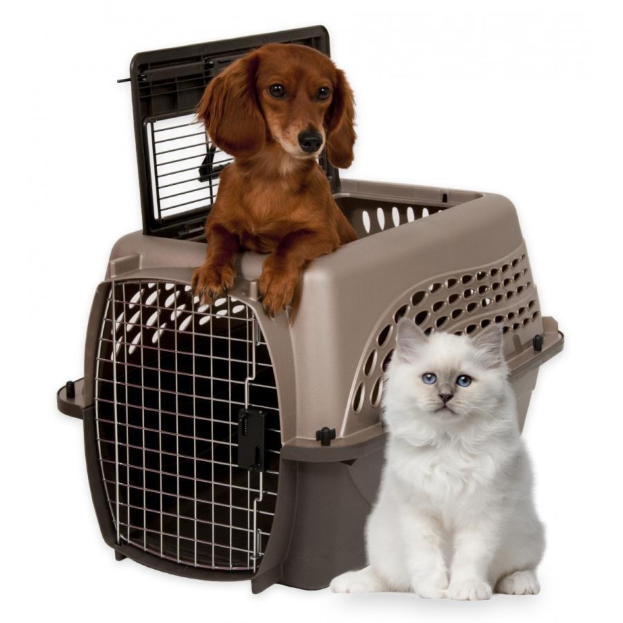 【予約商品】ペットケージ 旅行用 バリケンネル 飛行機 クレート キャリー ダブルドア 上開き 小型犬 猫 小動物 ウサギ SM ( 2ドア バリケンネル SM コーヒー )|freebirdcorp|09