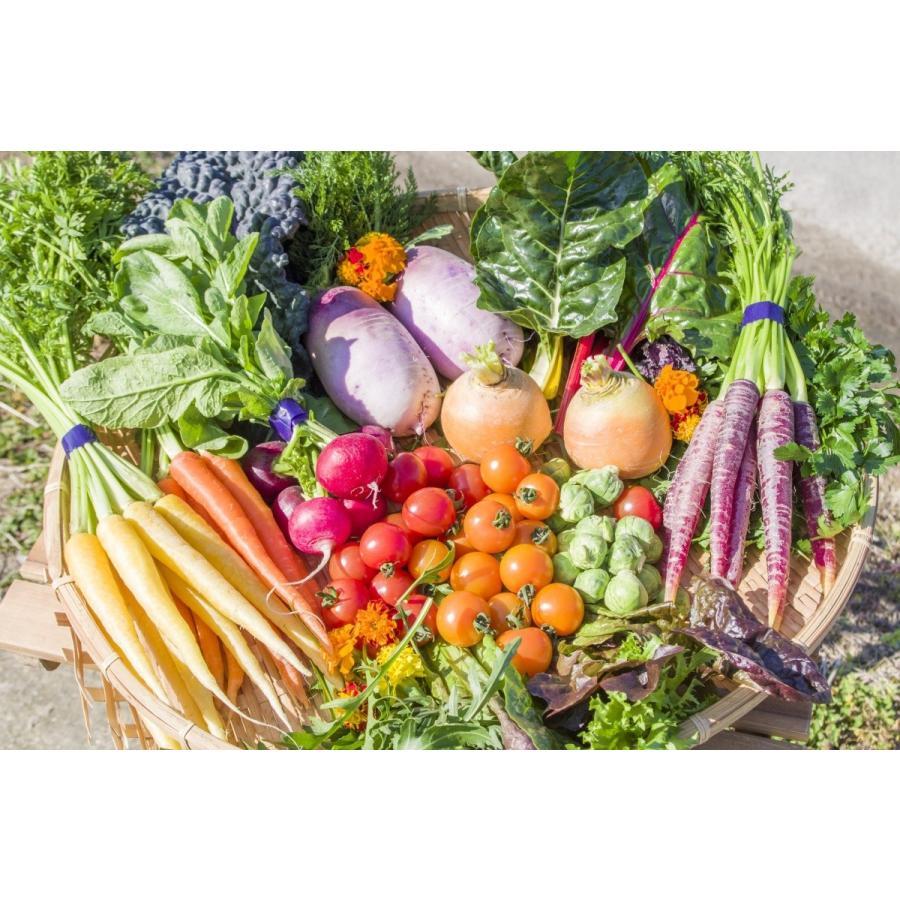 フレッシュグループ淡路島の香るハーブと彩り野菜セット 季節の12〜14種の厳選こだわり詰合わせ|freshherb